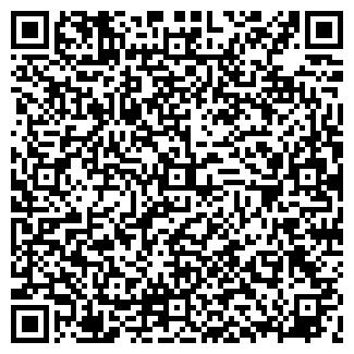 QR-код с контактной информацией организации Шкода, ООО