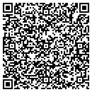 QR-код с контактной информацией организации Voldemar, ЧП
