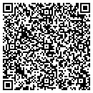 QR-код с контактной информацией организации Vip-avto, ЧП