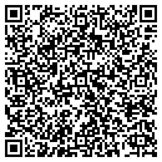 QR-код с контактной информацией организации Planetcar, ЧП