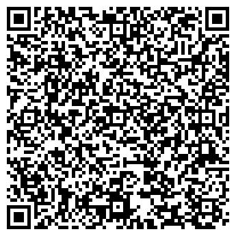 QR-код с контактной информацией организации VikingMoto, ЧП