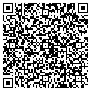 QR-код с контактной информацией организации ДТ-Тахо, ООО