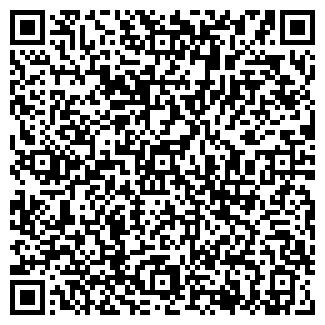 QR-код с контактной информацией организации Царенко, ЧП