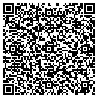 QR-код с контактной информацией организации Sally, СПД