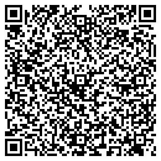 QR-код с контактной информацией организации ТНТ, ООО