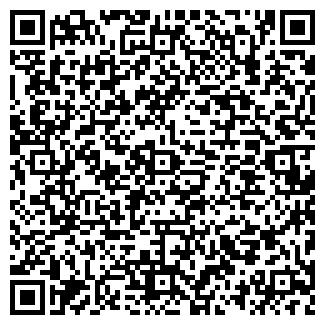 QR-код с контактной информацией организации Грицаев, ИП