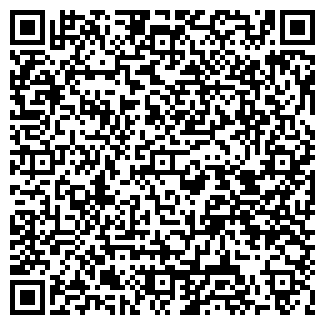 QR-код с контактной информацией организации Autoelectric, ИП