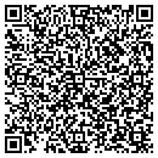 QR-код с контактной информацией организации Авто, ИП