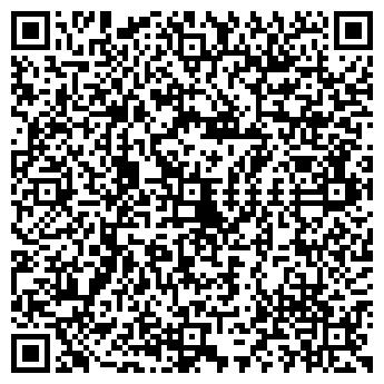 QR-код с контактной информацией организации Шины и диски, ИП