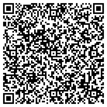 QR-код с контактной информацией организации Alemauto (Алемавто), ИП