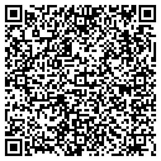 QR-код с контактной информацией организации ВЕСЕЛЬЕ