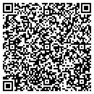 QR-код с контактной информацией организации ИП Серго