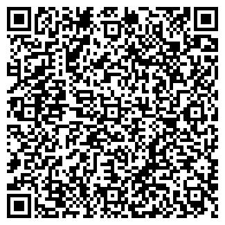 QR-код с контактной информацией организации Другая ИП Теплов