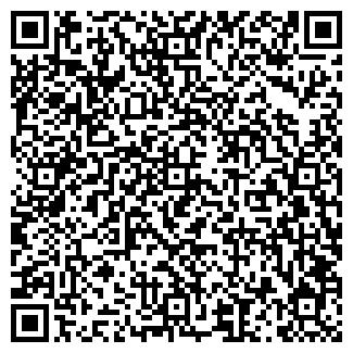 """QR-код с контактной информацией организации ИП """"БАБИЙ Я.А"""""""