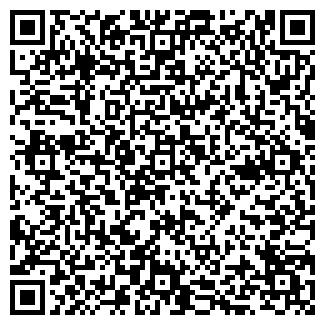 QR-код с контактной информацией организации Строй сервис (ИП)