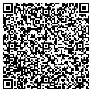 QR-код с контактной информацией организации TOO Ariana
