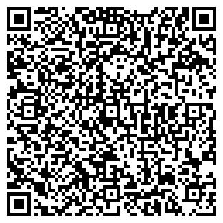 QR-код с контактной информацией организации Общество с ограниченной ответственностью TDVSA