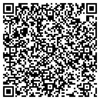 QR-код с контактной информацией организации ИП Шин