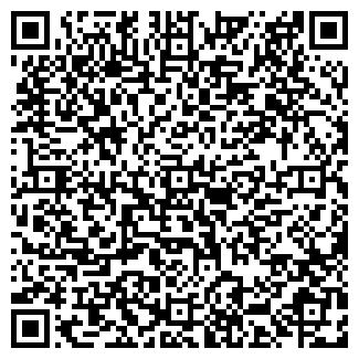 QR-код с контактной информацией организации LT, ООО