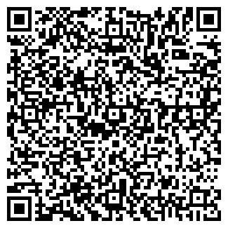 QR-код с контактной информацией организации ИП. Мазур