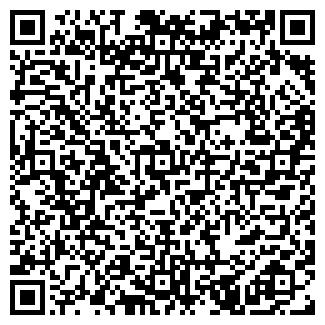 QR-код с контактной информацией организации Шумило, ИП