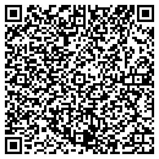 QR-код с контактной информацией организации Другая VKremont