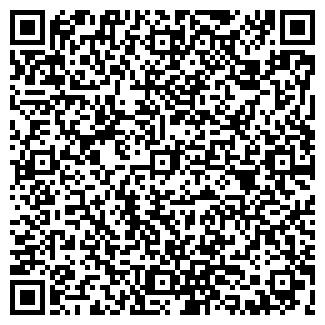 QR-код с контактной информацией организации Чудук, ИП
