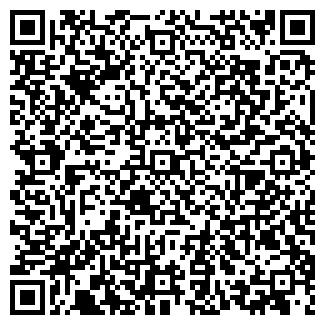 QR-код с контактной информацией организации ИП Рыбин