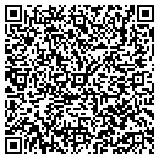 """QR-код с контактной информацией организации """"Фирма DKZ"""""""
