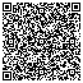 QR-код с контактной информацией организации Alfa Elektron