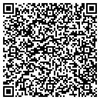 QR-код с контактной информацией организации Ваши Окна, ЧП ( Ваші Вікна, ПП )