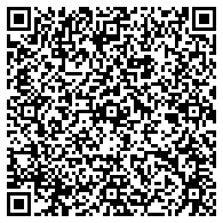 QR-код с контактной информацией организации Сириус
