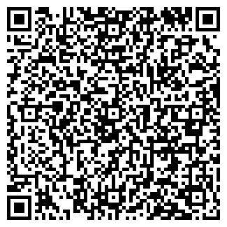 QR-код с контактной информацией организации Tехем, OOO
