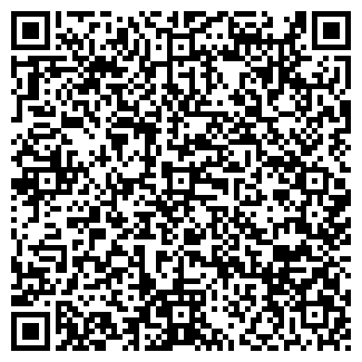 QR-код с контактной информацией организации Ремикс, ТОО