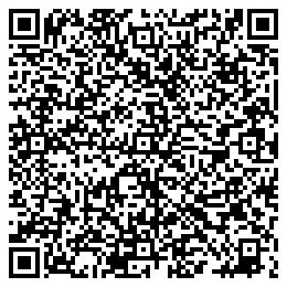 QR-код с контактной информацией организации Зайдер, ИП
