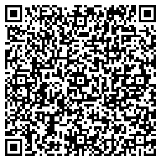 QR-код с контактной информацией организации ИП Chameleon