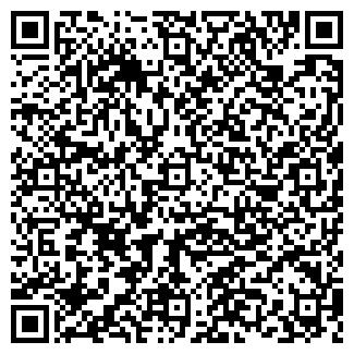QR-код с контактной информацией организации ИП Лемеза