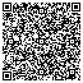 QR-код с контактной информацией организации ИП Мотузов