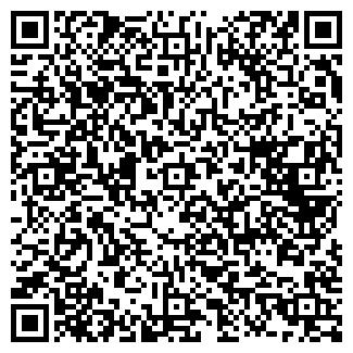 QR-код с контактной информацией организации ИП Бородаев