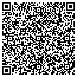 QR-код с контактной информацией организации ВОЛМЕТ, ООО