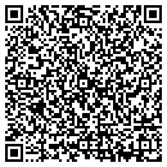 QR-код с контактной информацией организации ooo Ericson