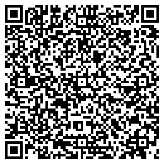 QR-код с контактной информацией организации Алми, ЧП