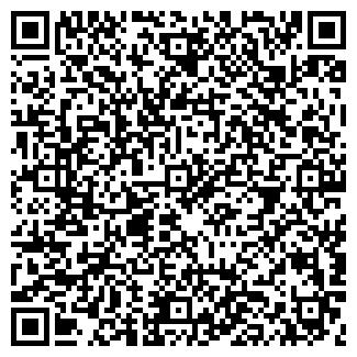 QR-код с контактной информацией организации Эссе, ООО