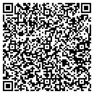 QR-код с контактной информацией организации ANDEZIT
