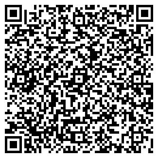 QR-код с контактной информацией организации Датикс, Субъект предпринимательской деятельности
