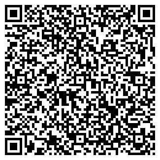 QR-код с контактной информацией организации Гофер, ЧП