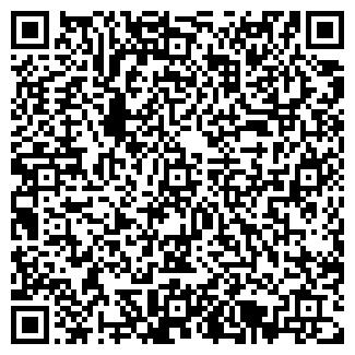 QR-код с контактной информацией организации Гефесто, ООО