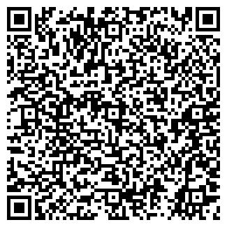 QR-код с контактной информацией организации Жидкие Обои, ИП