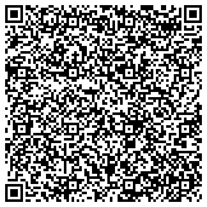 QR-код с контактной информацией организации СТЦ-версия, Компания