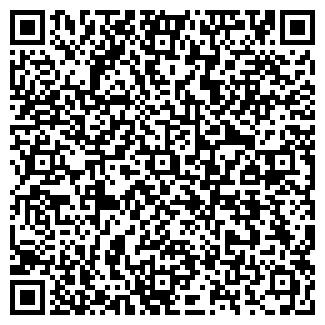 QR-код с контактной информацией организации Арт-студия, ИП